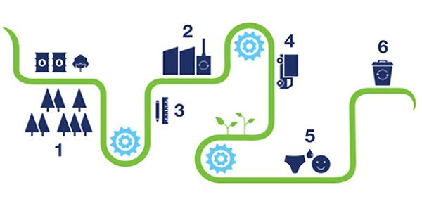Foco de sustentabilidade da TENA através de cadeias de valor