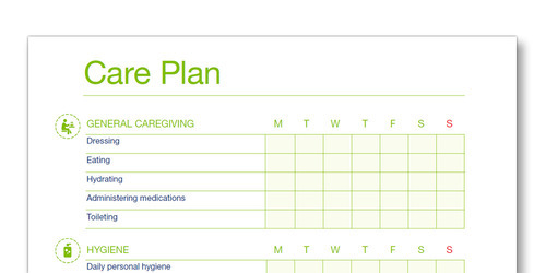 Snap shot of the TENA Family Carer Care Plan template