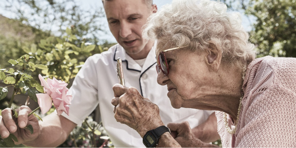 Vanha nainen ja mieshoitaja katsomassa ruusua